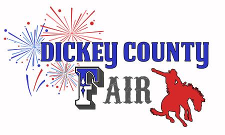 Dickey County Fair image
